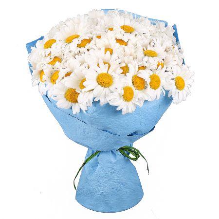 Bouquet 101 daisies