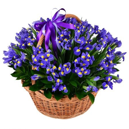 Bouquet 101 blue iris