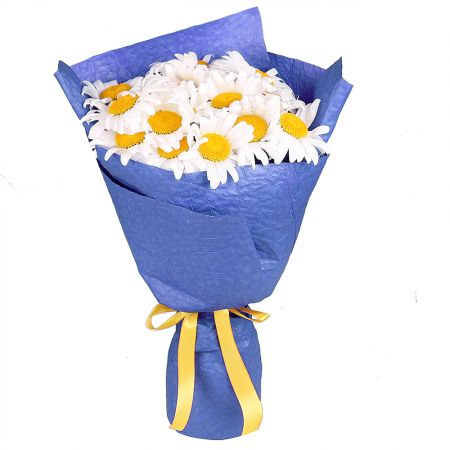 Bouquet 15 daisies