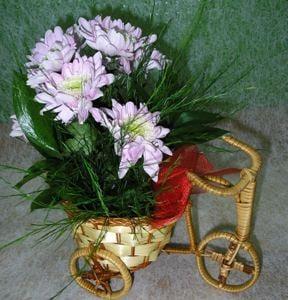 Bouquet Composition \'Anrie\'