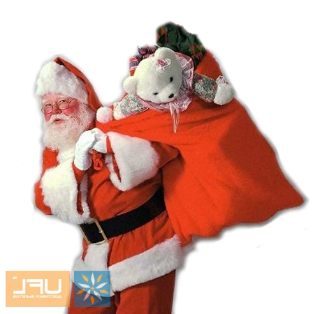 Bouquet Congratulations dressed as Santa Claus