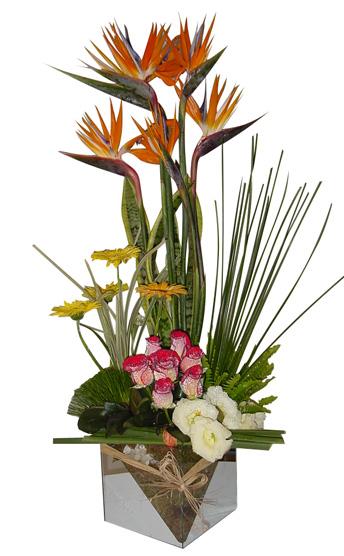 Bouquet Gothic A vase 7 Strelitz 5 gerberas + 13 roses