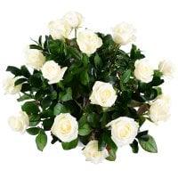 Bouquet Snow