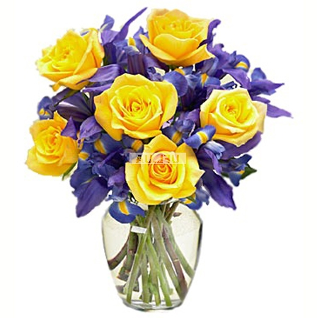Bouquet Contrast
