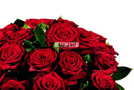 Bouquet Red roses by the piece 70 cm