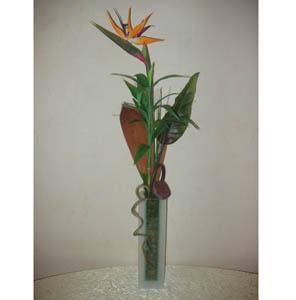 Bouquet Composition of strelitzia
