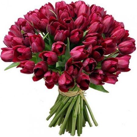 Bouquet 49 Tulips