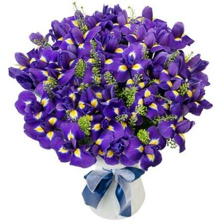 Bouquet Iris 49 pcs.
