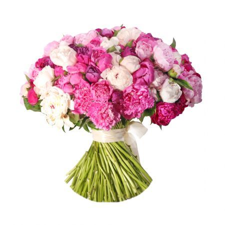 Bouquet 59 pions