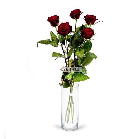 Bouquet 5 Roses