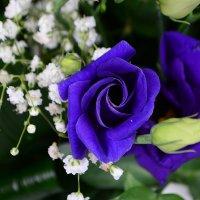 Bouquet Elvira