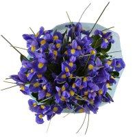 Bouquet Аzurite