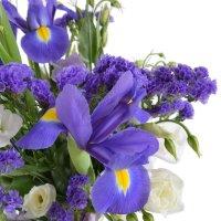 Bouquet Lavender fields