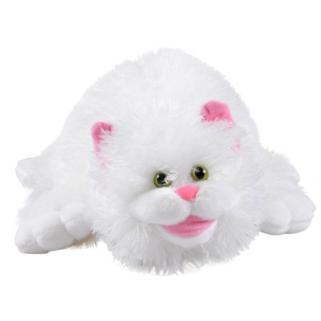 Product White cat
