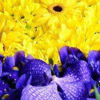Bouquet Flag of Ukraine