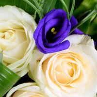 Bouquet Marine