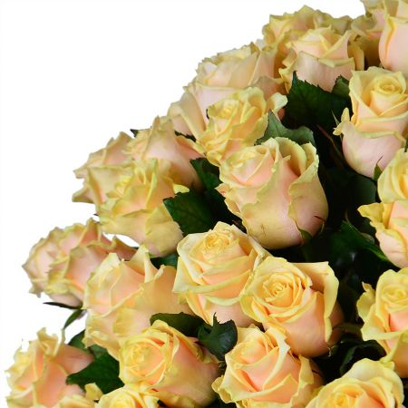 Bouquet 101 creamy roses