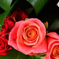 Order a beautiful bouquet for Name-Day