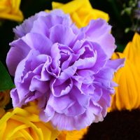 Order original bouquet