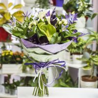 Bouquet Forest serenade