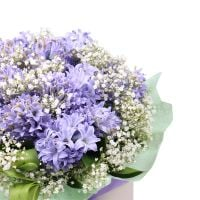 Bouquet Fragrant