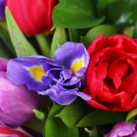 Bouquet Bright spring
