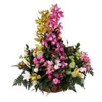 Bouquet Orchid dance
