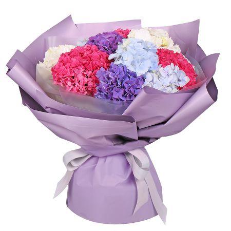 Bouquet Bouquet of 11 hydrangeas