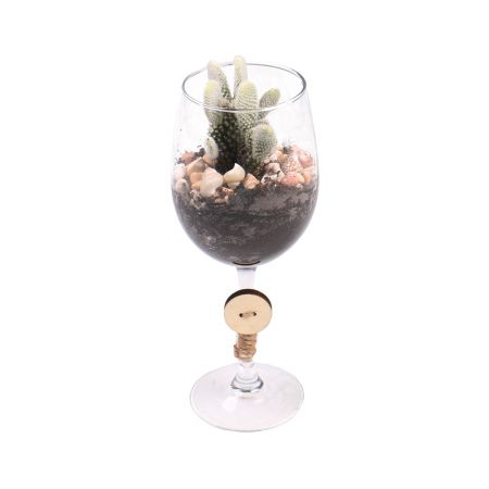 Product Florarium in a glass