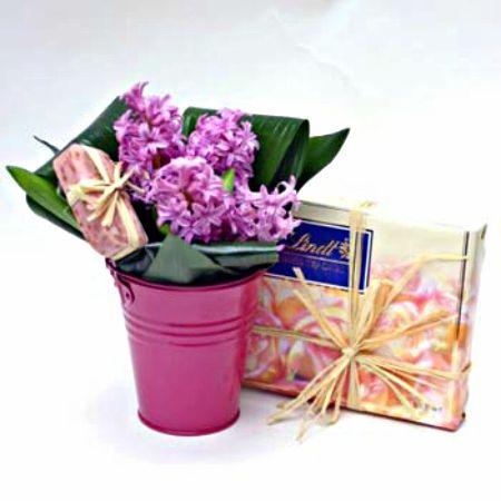 Bouquet Hyacinths + сhocolates