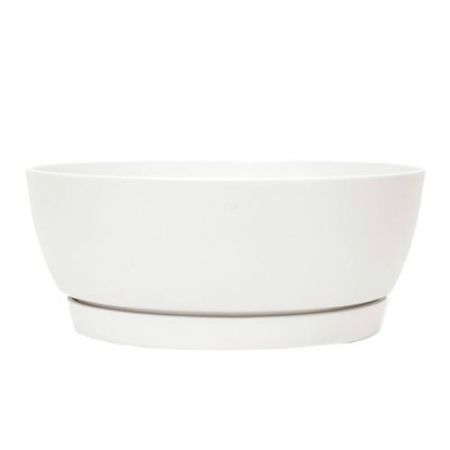 White ceramic pot-saucer with delivery