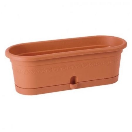 Product Pot for cactus