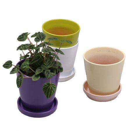 Product Ceramic pot