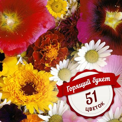 Special price on the bouquet-mix of 51 flowers