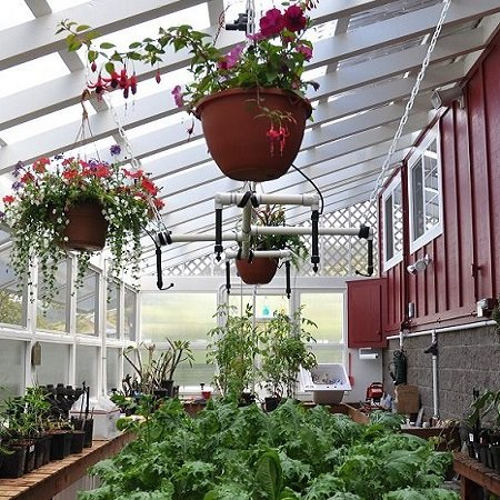 Product Hotel for plants