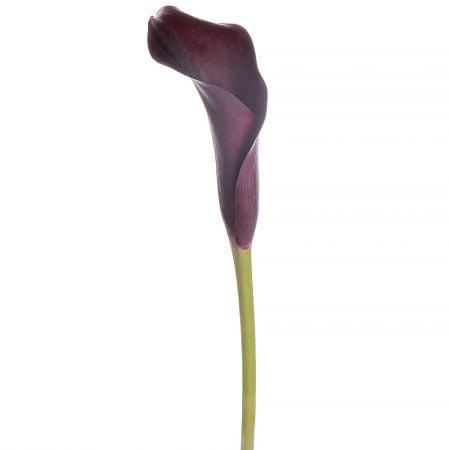 Bouquet Piece purple calla