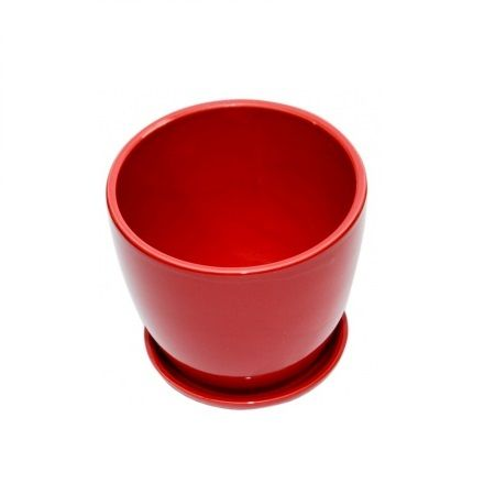 Order red ceramic pot small plants with delivery
