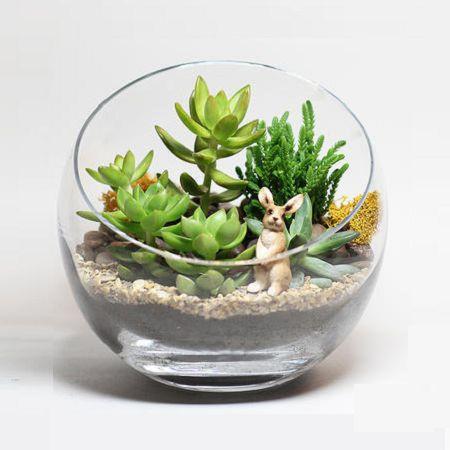 Bouquet Succelent Forest in a Vase