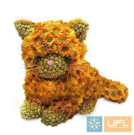 Bouquet Foxy