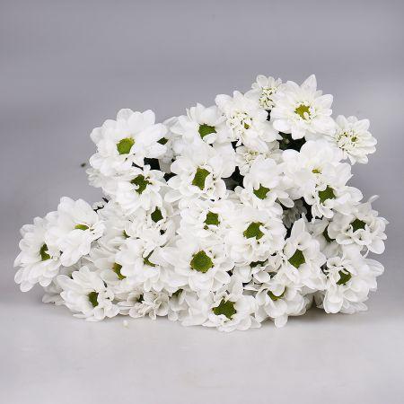 Bouquet Wholesale ОПТОМ Chrysanthemum Chic