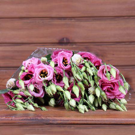 Product Whosale Eustoma Double Rosita Pink