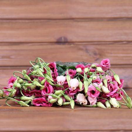 Product Whosale Eustoma Piccolo Rose