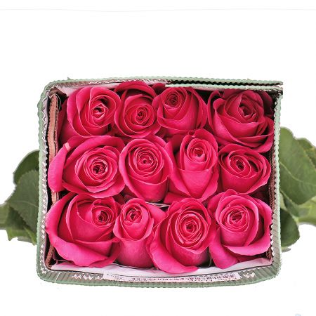 Product Wholesale Rose Pink Floyd (Ecuador)