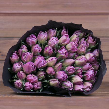 Product Wholesale Tulips Double Princess