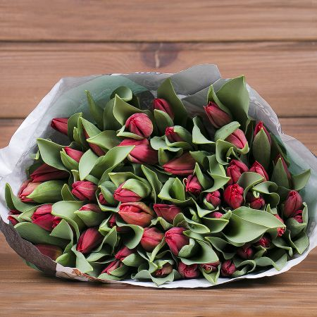 Product Wholesale Tulips Strong Fire