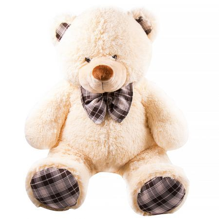Buy fascinating beige Teddy bear with delivery in the online store