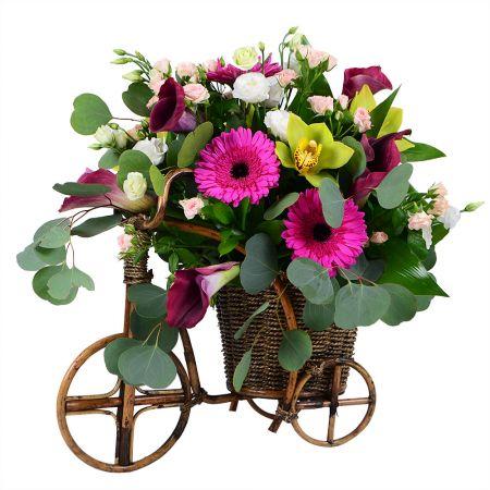 Bouquet Pleasant evening