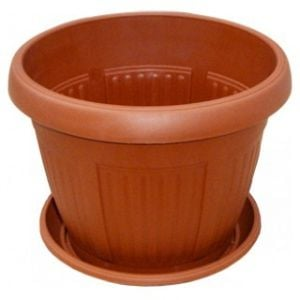 Order a pot with stand (16 cm) with delivery