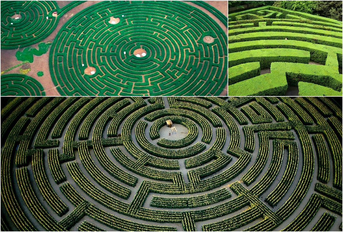 Largest maze