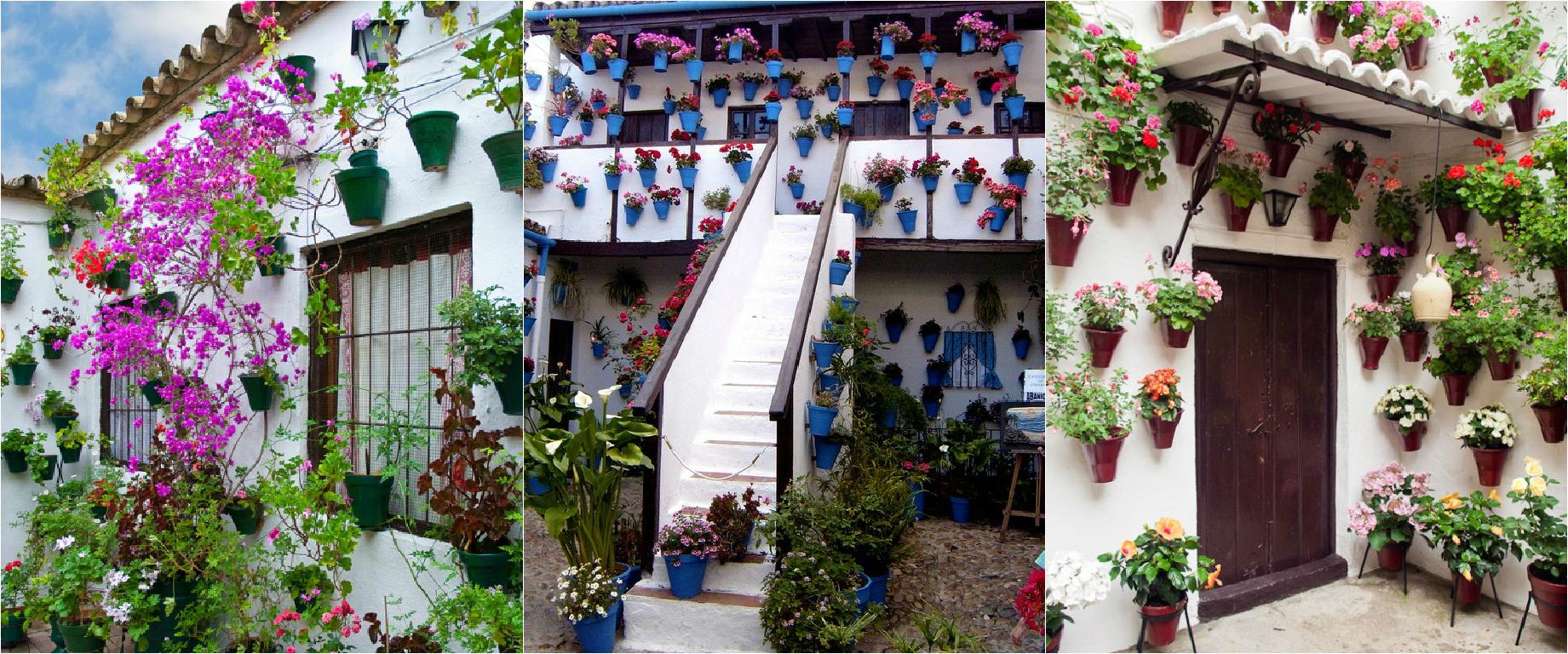 Festival in patio
